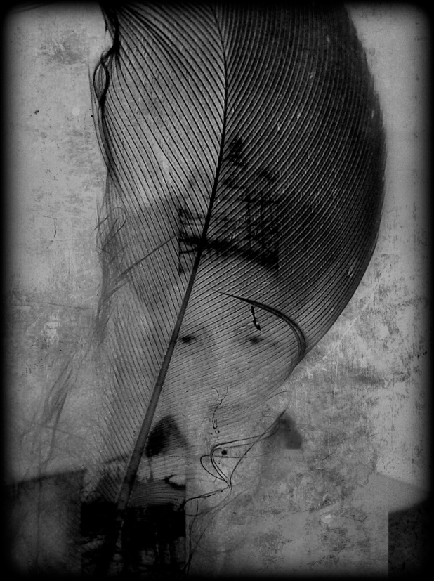 Kalipha by Roger Guetta